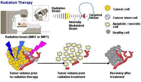 How Do Cancer Treatments Work? [timeline]