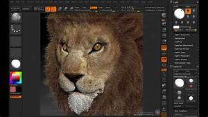Lion Eye Zbrush4 Polypainting Meterial
