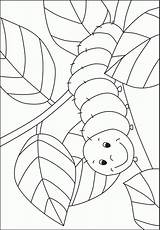 Caterpillar Coloring Pre Template Preschool Hungry Bug Pages Crafts Kindergarten Activities Printable Kigaportal Insect Spring Sheets Colouring Templates Craft Worksheets sketch template