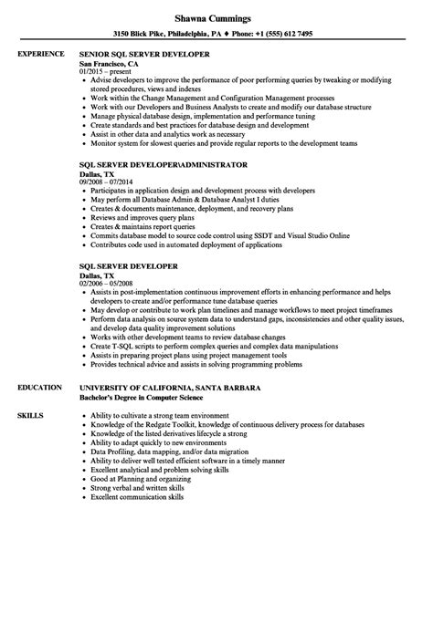 sql server developer resume sles velvet
