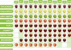 21 Best Apple Varieties and Facts images | Apple varieties ...