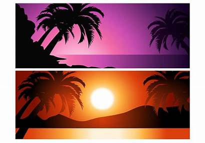 Sunset Tropical Background Vector Tree Palm Pack