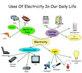 what part of a green do you use do you know interesting facts about electricity