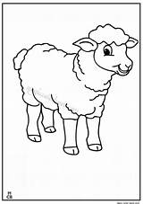 Sheep Coloring Pages Shaun Printable Lamb Animal Magiccolorbook Chipmunks Sheets Cartoon Everfreecoloring sketch template