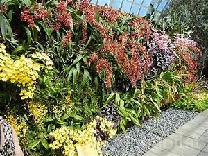 Hängende Gärten Selbst Gestalten : h ngende g rten und pflanzenw nde f r die wohnung oder den balkon ~ Bigdaddyawards.com Haus und Dekorationen