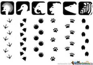 Jungle Animal Footprint Clip Art