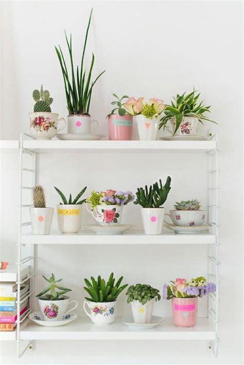 plantes succulentes d interieur d 233 corez avec les plantes grasses d int 233 rieur archzine fr