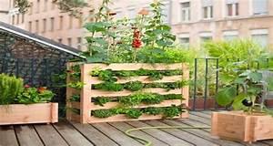 Déco De Jardin : vite on fait son mini jardin sur palette bois deco cool ~ Melissatoandfro.com Idées de Décoration