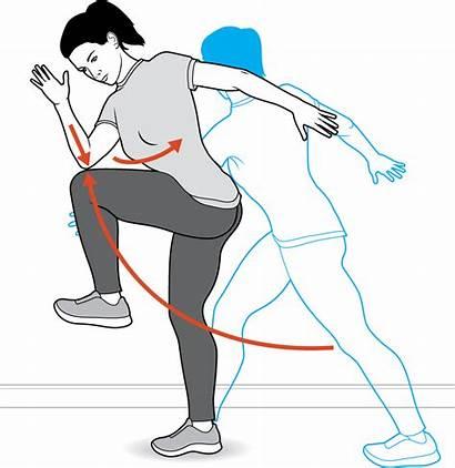 Exercise Knee Lift Lunge Leg Reverse Exercises