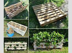 Použití palet na zahradě nejen při pěstování ovoce a