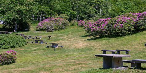 Craggy Gardens by Craggy Gardens Blue Ridge Parkway
