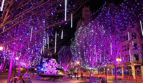 christmas lights in asheville 7 best spots 2018
