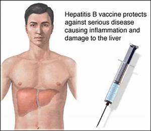 High-dose Hepatitis B Vaccination May Protect HIV Positive People Who Do Not Respond to a ... Hepatitis A and Hepatitis B Vaccine