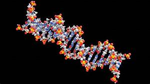Researchers Find A Way To Encode Data Into DNA Strands