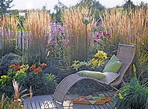Quel Arbre Planter Près D Une Maison : 11 id es de brise vue pour tre tranquille au jardin ~ Dode.kayakingforconservation.com Idées de Décoration