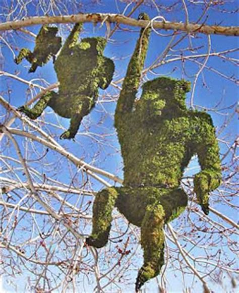 The One Acre Wood T Is For Topiary