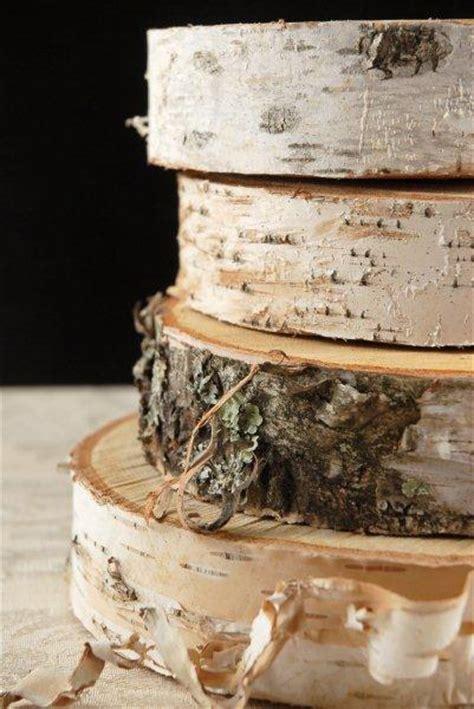 birch slab tree slices    thick