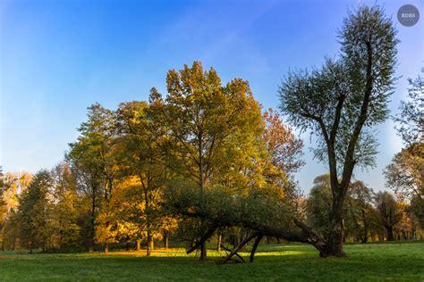 Englischer Garten Nördlicher Teil by Englischer Garten Der Blauen Stunde