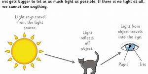 Light And How We See  Gold  Guided Reading Pack