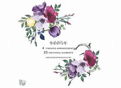Watercolor Floral Clipart Plum Cliparts Graphic Library