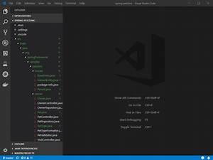 Visual Studio C... Java