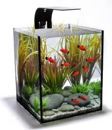 aquarium designer small fish tank designs freshwater fish tanks design 2017 fish tank maintenance