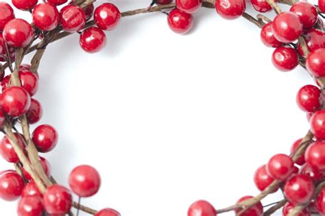 photo  bright red christmas berry border  frame