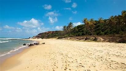 Mexico Desktop Wallpapers Beach Beaches Palm Tropical