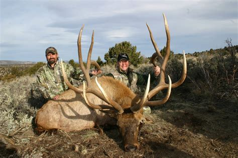 Shed Utah 2016 by 100 Shed Utah 2016 Insanely Awesome Elk
