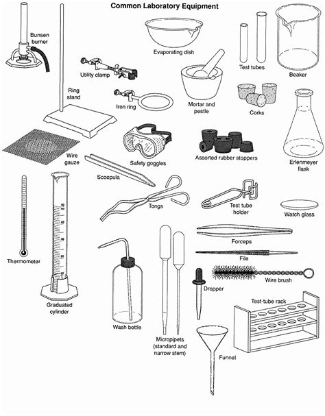 laboratory equipment worksheet the best and most
