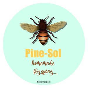 homemade fly repellent  pine sol  flies