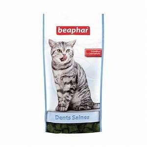 Friandise Pour Chat : friandises dents saines pour chat myvetshop ~ Melissatoandfro.com Idées de Décoration