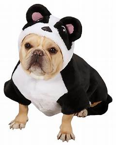panda dog costume pictures to pin on pinterest pinsdaddy dog beds b91a35dd ffc