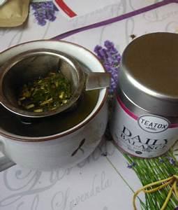Detox Tee Abnehmen : abnehmen entgiften mit teatox detox tee ~ Udekor.club Haus und Dekorationen
