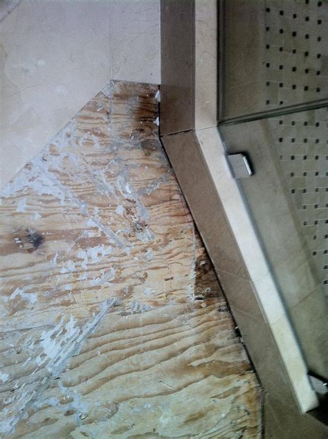 tiling   glue tile  plywood home improvement