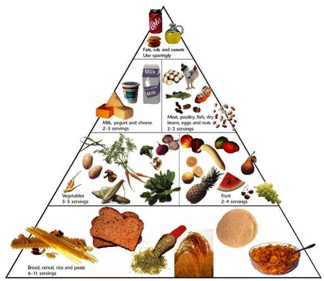 basic food groups and nutrition guide for losing weight weight loss for all