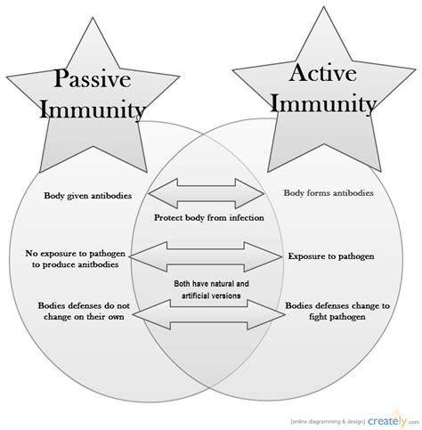 active  passive immunity venn diagram creately