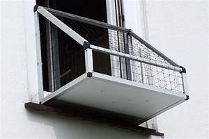Viele Fliegen Am Fenster : katzenbalkon am fenster ~ Orissabook.com Haus und Dekorationen