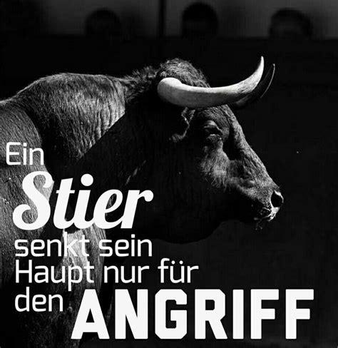Wassermann Und Stierfrau by Die Besten 25 Sternzeichen Stier Ideen Auf