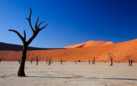 desert landscape images best landscape backgrounds wallpaper 1920x1080 26930