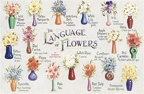 tussie mussies the language of flowers say it with tussie mussies the victorian language of flowers freddie s flowers blog