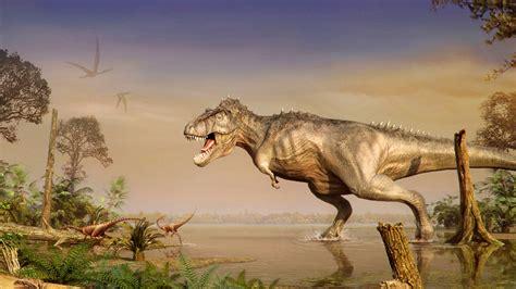 Animal Dinosaur Wallpaper - dinosaurs world of animals from the past hd wallpaper