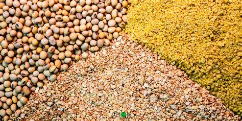 agricultural products  commodities trading india agro