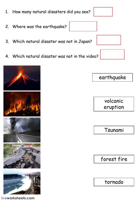 natural disaster interactive worksheet