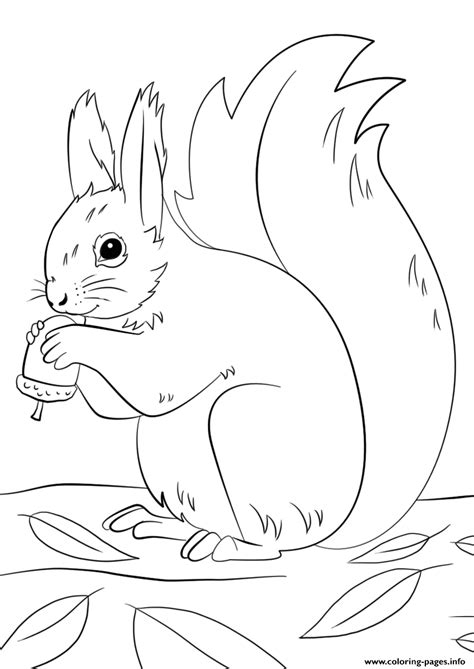 squirrel preparing  winter fall coloring pages printable