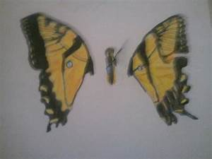 Freehanded Brand New Eyes Paramore Album Cover by Raptoo ...