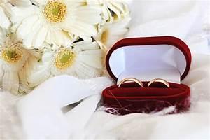 most elegant wedding rings pictures elsoar With most elegant wedding rings
