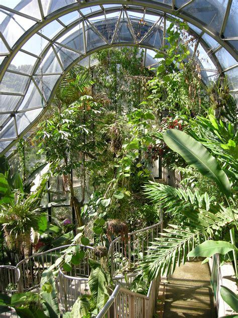 royal botanical gardens file royal botanic gardens sydney 03 jpg wikimedia commons