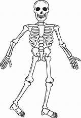 Skeleton Coloring Printable Halloween sketch template