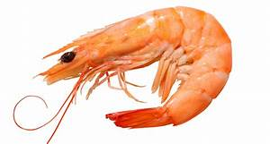 Shrimp Vs. Prawn: What Are The Differences?
